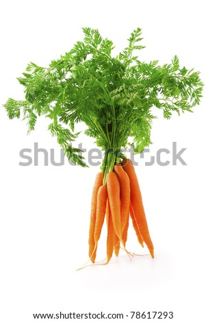 fresh carrot fruits with green leaves, isolated on white background