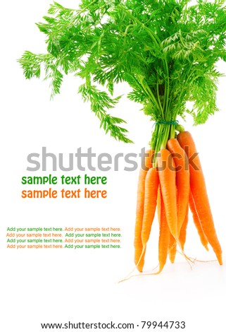 fresh carrot fruits with green leaves, isolated on white background - stock photo