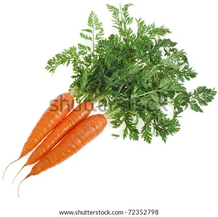 fresh carrots close up isolated on white background