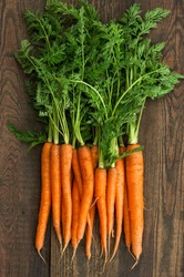 Fresh carrots with green leaves on rustic wooden background