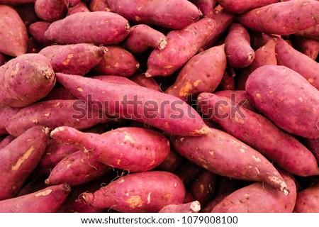 fresh cassava and fresh  yam and fresh vigetable #1079008100
