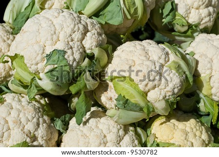 Fresh Cauliflower Heads at Farmers Market