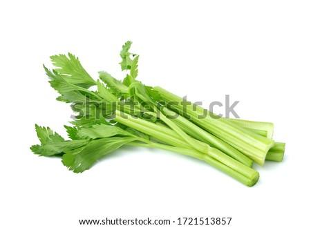 Fresh celery isolated on white background Photo stock ©
