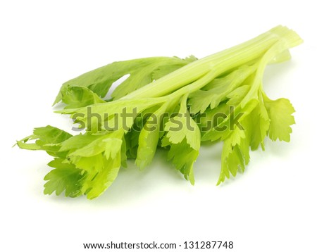 fresh celery leaves on a white background
