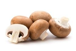Fresh champignon mushrooms isolated on white.