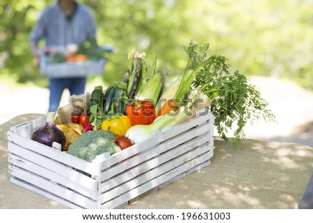 Fresh chemical-free vegetables you harvest