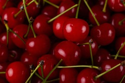 Fresh cherry on a plate with summer flowers. fresh ripe berries. cherries. Close-up. Top view.