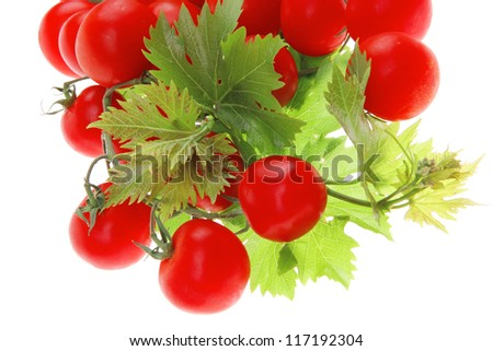 fresh cherry tomatoes on green branch with leaves isolated on white background