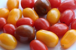Fresh cherry tomatoes. Various colorful tomatoes