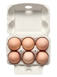Fresh chicken eggs in container with natural shadow isolated on white background. Top view