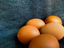 fresh chicken eggs that are rich in