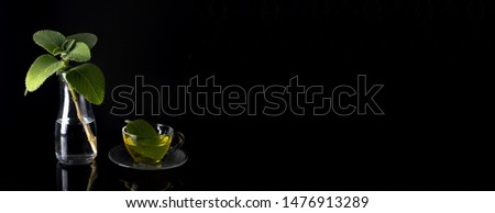 Fresh chile boldo tea in glass cup next to fresh chile boldo leaves branch on mirrored glass table with black background Stock fotó ©