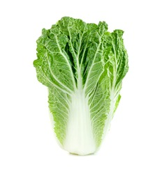 Fresh chinese cabbage leaf isolated on white background ,Green leaves pattern