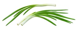 Fresh chives, green onion isolated on white background with clipping path
