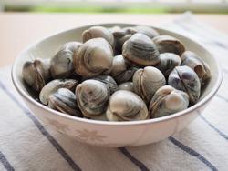 Fresh clams in a ceramic bowl