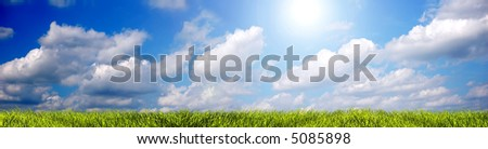 Fresh, clean summer landscape panorama. Ideal as a background