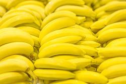 Fresh clear banana sunny yellow background texture