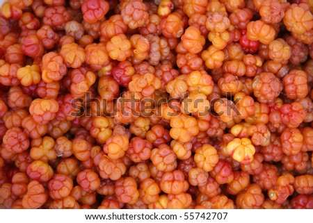 Fresh cloudberry background closeup