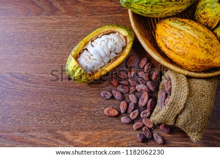 Fresh cocoa fruit with cocoa pods With cocoa beans in a basket on the table