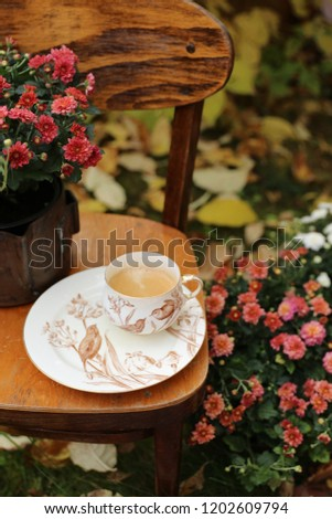Fresh coffee in antique porcelain, china cup, bird pattern on vintage wooden child chair, vertical photo, outdoor and space