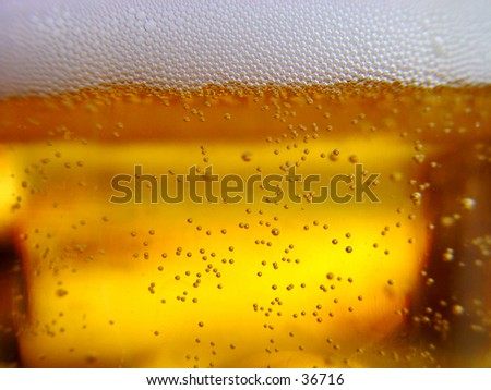Fresh cold beer - stock photo
