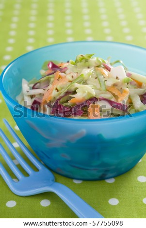 Fresh cole slaw made with green cabbage, red cabbage, carrots, and mayonnaise.