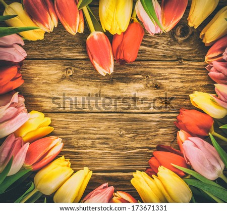 Fresh colourful tulips in a heart-shaped frame on a grunge wood background with weathered woodgrain texture and copyspace