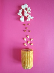 Fresh corn and pop corn, on a pink background. Top view.
