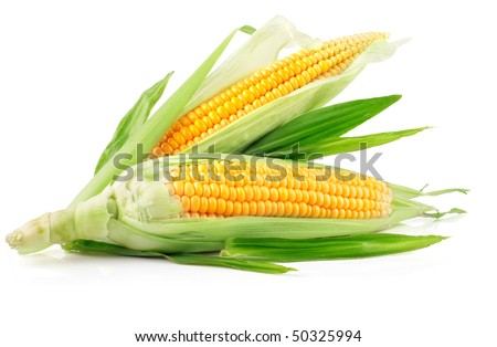 fresh corn fruits with green leaves isolated on white background