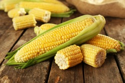 Fresh corn on cobs on rustic wooden table, closeup