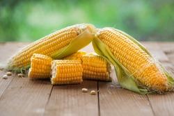 Fresh corn on cobs on rustic wooden table, closeup. Ripe corn. Half of broken open sweet corn.