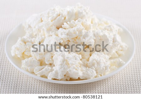 Fresh cottage cheese on the white plate