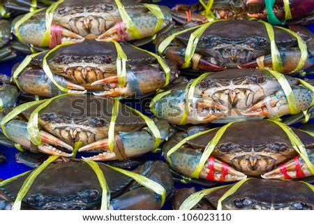 Fresh crabs on sale at a local market in Thailand