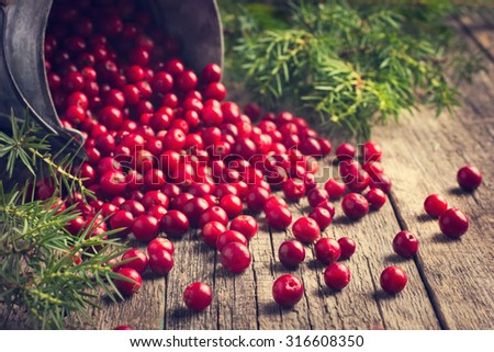 Shutterstock fresh cranberry (cowberry) on wooden background, selective focus, toned