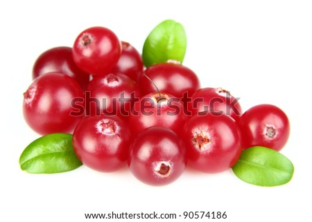 Fresh cranberry with leaves