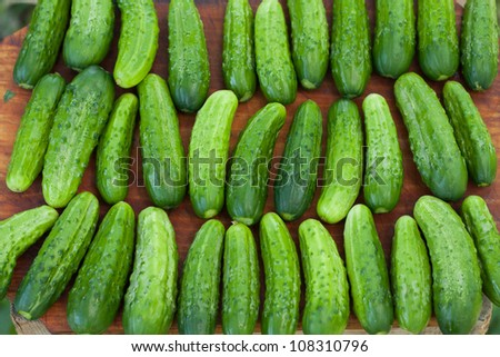 Fresh cucumbers on a wooden board