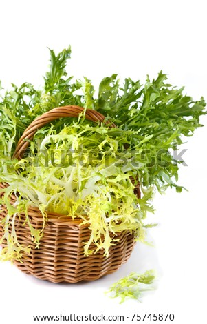 Fresh curly escarole endive leaves on a wicker basket.