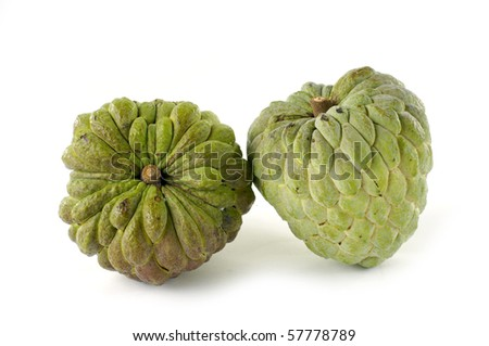 Fresh custard apple isolated