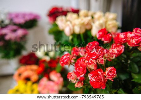 Fresh Cut Flowers And Arrangements In Florist Shop, Tracking Shot