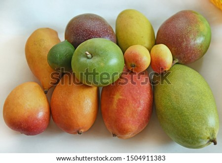 Fresh Different Varieties of Mangoes on display at Mango Festival New Delhi India.