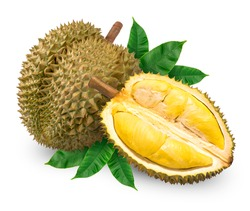 Fresh durian with leaf isolated on white background, Durian fruit isolated on white background With clipping path