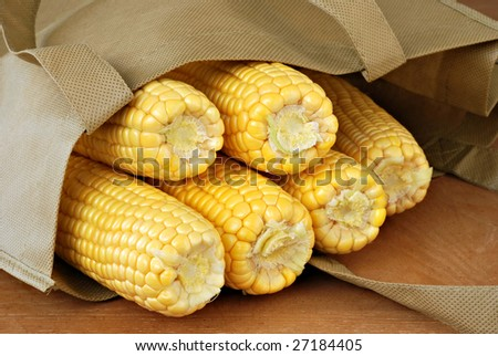 Fresh ears of yellow corn in reusable shopping bag.  Close-up with shallow dof.
