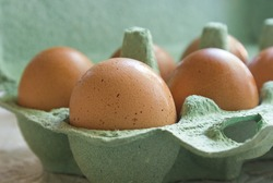 fresh eggs are in the tray