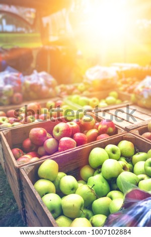 Fresh farmers apples at local outdoor market. Healthy food background