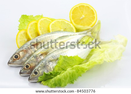 Fresh fish and salad on white