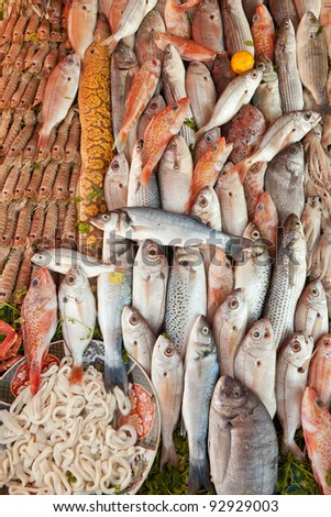 Fresh fish and seafood background lot of species