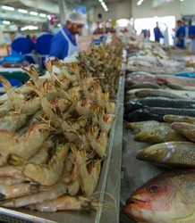 fresh fish and seafood on ice in a fish market in abu dhabi