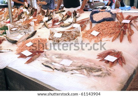 Fresh fish displayed at a market street
