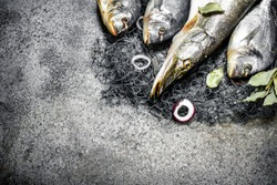 Fresh fish, dorado and pike with a fishing net. On a rustic background.