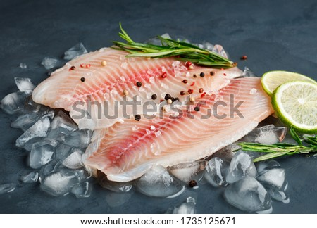 Fresh fish fillet of sea bass in ice on a dark slate background. Photo stock ©
